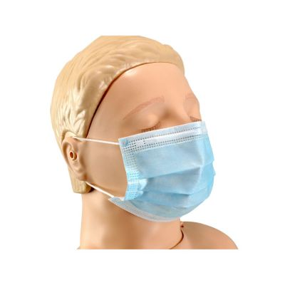 10 x Disposable 3 Ply Face Masks